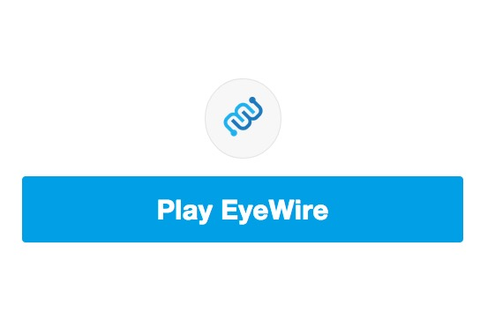 About Eyewire, A Game to Map the Brain