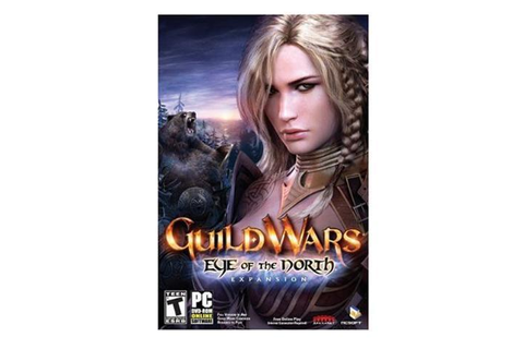 Guild Wars: Eye of the North PC Game - Newegg.com