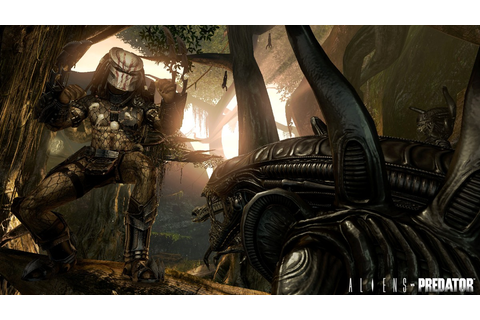 Alien Vs Predator Free download Pc Game Full Version ...