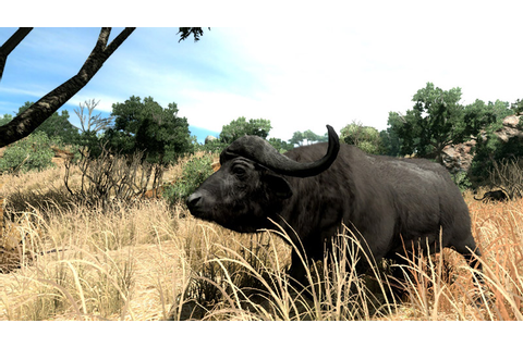 Amazon.com: Cabela's Big Game Hunter '10 - Playstation 3 ...
