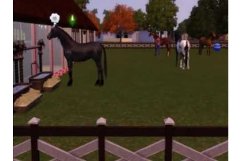 The sims 3 stajnia Horseland - YouTube