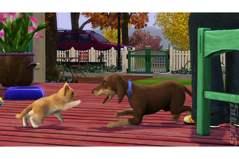 Dream Games: The Sims 3 Pets