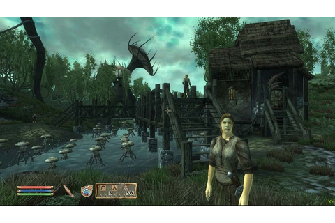 Download The Elder Scrolls IV: Oblivion (GOTY Deluxe ...