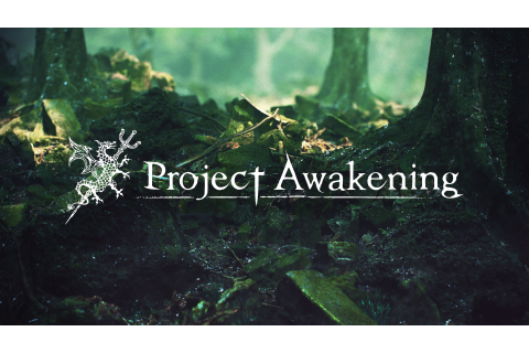 Cygames' Project Awakening early gameplay video shown ...