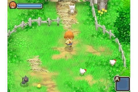Harvest Moon: The Tale of Two Towns (Câu chuyện hai ngôi ...