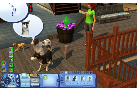 How to Train Your Pets on the Sims 3 Pets for PC: 3 Steps