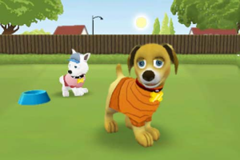Touch Pets Dogs: Producer Q&A