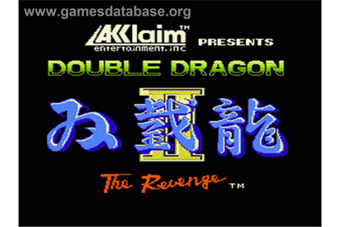 Double Dragon II - The Revenge - Nintendo NES - Games Database