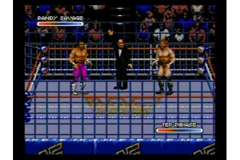 Review - WWF Rage In The Cage (Sega CD) - YouTube