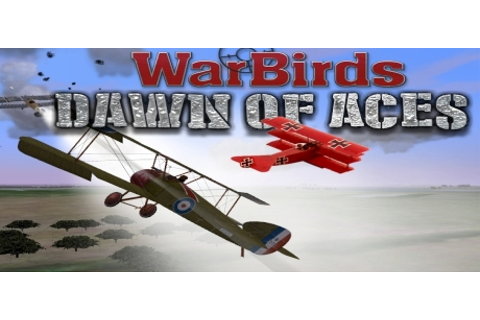 WarBirds Dawn of Aces, World War I Air Combat on Steam