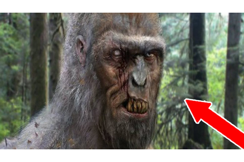 HUNTING BIGFOOT IN THE WOODS - Scariest Game Ever ...