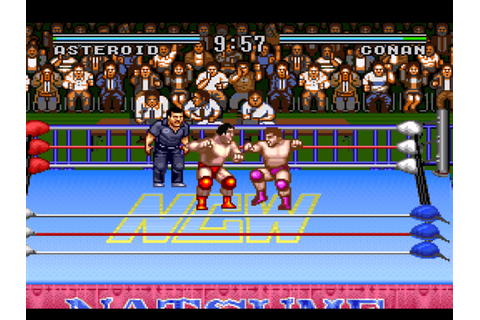 Natsume Championship Wrestling Download Game | GameFabrique
