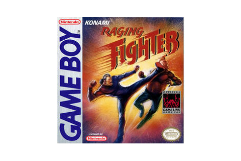Raging Fighter - jeu Nintendo Game Boy