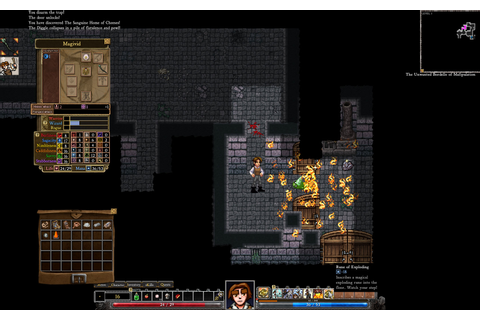 Indie Roguelike Dungeons of Dredmor Gains Steam at $5 ...