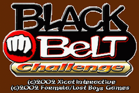 Play Black Belt Challenge Nintendo Game Boy Advance online ...