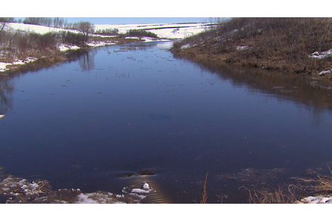 Wetlands: The Drain Game | Benefits | Science | Video ...