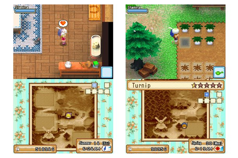 Harvest Moon Grand Bazaar (US) NDS Roms Download | Premium ...