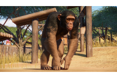 Planet Zoo is adding primates, reptiles, and big cats to ...