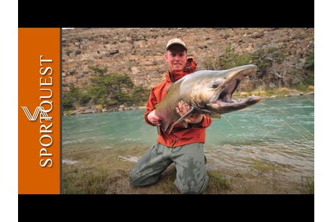 Argentina Fly Fishing – King (Chinook) Salmon (1080p HD ...