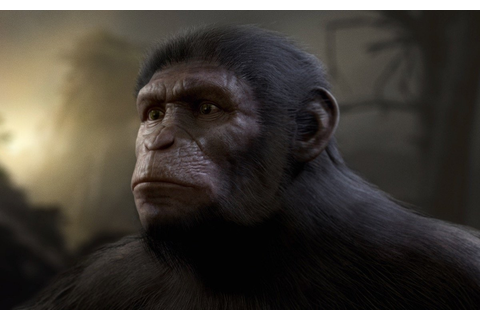 Apes Together Strong! Planet of the Apes Video Game ...