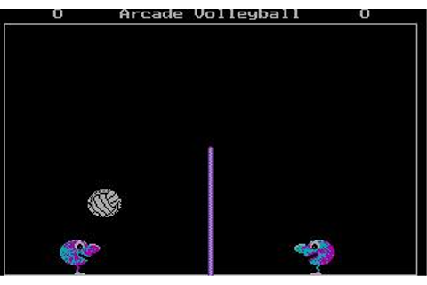 Arcade Volleyball Download (1987 Sports Game)