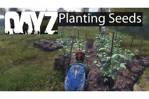 DayZ Xbox One Gameplay Planting Tomato Seeds Guide - YouTube