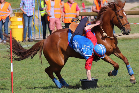 Le Pony-Games un sport d'avenir? – international pony ...