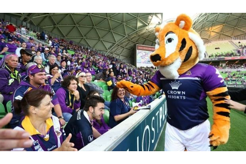 Tigerair 'impostor' mascot booted from official Canberra ...