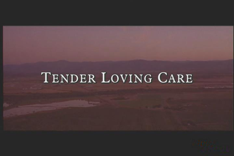 Tender Loving Care Download (1998 Adventure Game)