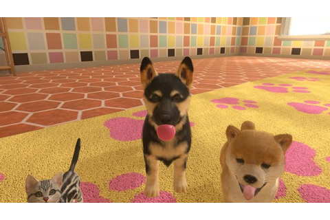Little Friends: Dogs and Cats Review | A ruff Nintendogs ...