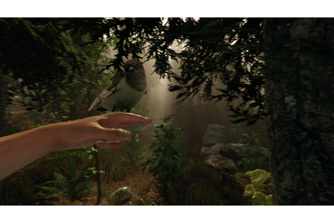 The Forest Will Finally Be Getting A VR Game Mode - VR ...