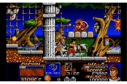 Risky Woods Download (1992 Arcade action Game)