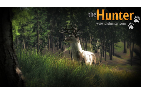 The Hunter - Conhecendo O Game (pt-br) - YouTube