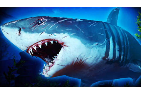 AMAZING NEW SHARK GAME COMING SOON | Maneater - YouTube