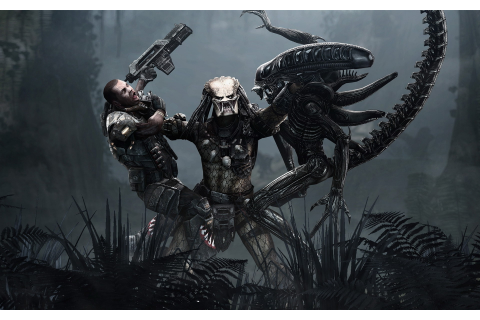 Aliens Vs. Predator Game Wallpapers | HD Wallpapers | ID #8060