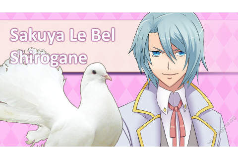 Hatoful Boyfriend Collector's Edition - Download Free Full ...