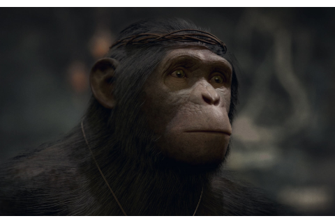 Planet of the Apes: Last Frontier Coming This Fall