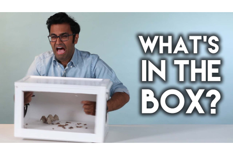 What's In The Box? - YouTube
