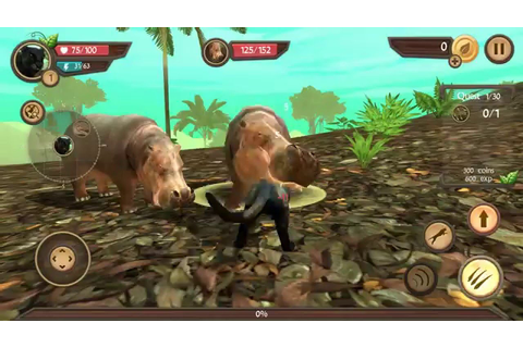 Wild Panther Sim 3D Android Gameplay HD - YouTube