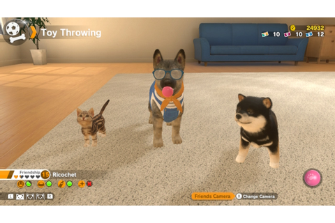 Little Friends: Dogs and Cats for Nintendo Switch review ...
