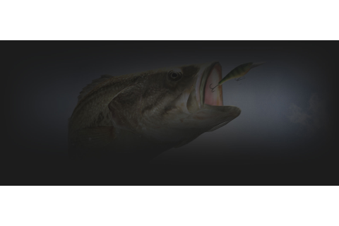 Rapala Fishing Frenzy 2009 - PS3 - Onde comprar | Compare ...