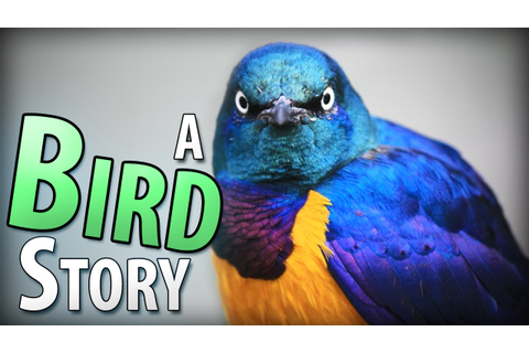 A Bird Story Game - Complete - I CRIED ~ 60 FPS - YouTube
