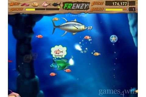 Feeding Frenzy 2. Download and Play Feeding Frenzy 2 Game ...