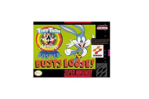 Amazon.com: Tiny Toon Adventures: Buster Busts Loose ...