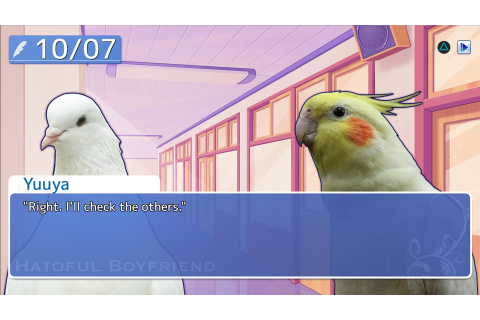 Hatoful Boyfriend - PS4 Review - PlayStation Country