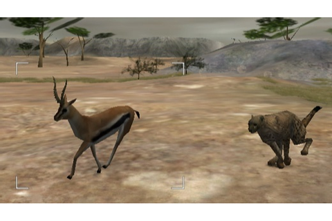 Wild Earth: African Safari, Wii - Specificaties - Tweakers