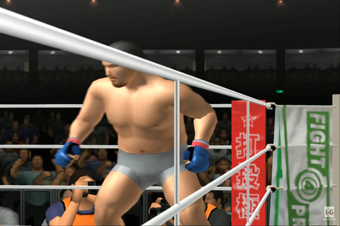 Pride FC: Fighting Championships Download Game | GameFabrique