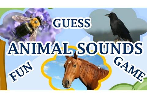 Animal Sounds, Guess The Animal By The Sound, A Fun Game ...