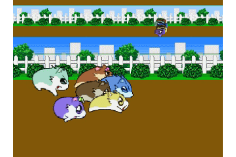 Hamster Monogatari 64 (2001) by Culture Brain N64 game