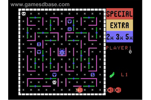 The Vintage Game Spot: Game Review: LadyBug for ColecoVision